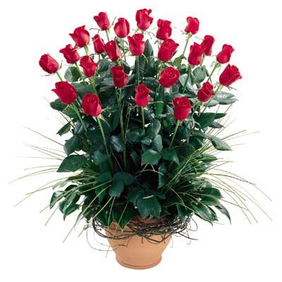 Muğla çiçek gönderme sitemiz güvenlidir  10 adet kirmizi gül cam yada mika vazo