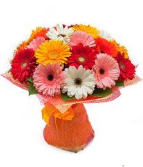 Renkli gerbera buketi  Muğla çiçek gönderme