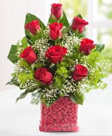 Cam içerisinde 9 adet kırmızı gül  Muğla çiçek mağazası , çiçekçi adresleri