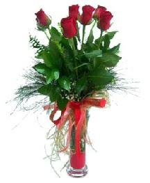 vazo içerisinde 5 kırmızı gül  Muğla çiçekçi mağazası