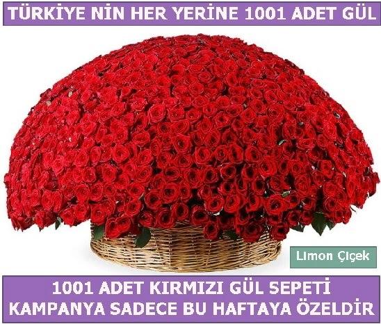 1001 Adet kırmızı gül Bu haftaya özel  Muğla internetten çiçek siparişi