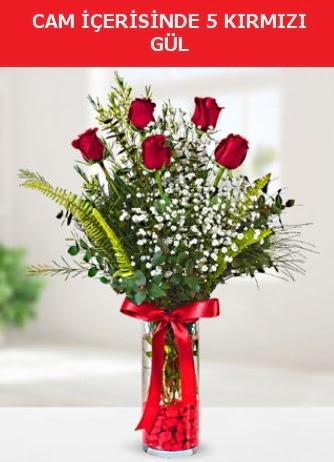 Cam içerisinde 5 adet kırmızı gül  Muğla çiçek servisi , çiçekçi adresleri