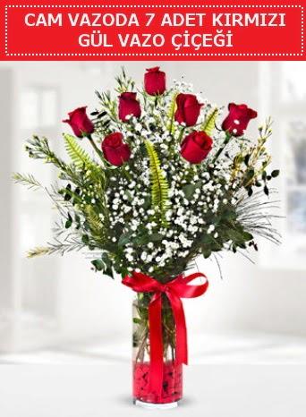Cam vazoda 7 adet kırmızı gül çiçeği  Muğla çiçek siparişi vermek