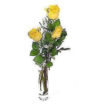 Muğla güvenli kaliteli hızlı çiçek  3 adet kalite cam yada mika vazo gül
