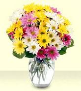Muğla güvenli kaliteli hızlı çiçek  mevsim çiçekleri mika yada cam vazo
