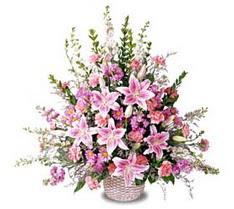 Muğla çiçek servisi , çiçekçi adresleri  Tanzim mevsim çiçeklerinden çiçek modeli