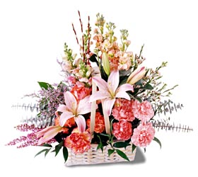 Muğla çiçek servisi , çiçekçi adresleri  mevsim çiçekleri sepeti özel tanzim