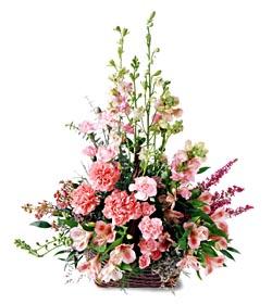 Muğla anneler günü çiçek yolla  mevsim çiçeklerinden özel