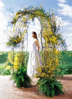 Muğla çiçek mağazası , çiçekçi adresleri  güller ve mevsim çiçegi