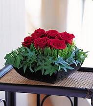 Muğla çiçek servisi , çiçekçi adresleri  10 adet kare mika yada cam vazoda gül tanzim