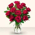 Muğla online çiçek gönderme sipariş  10 adet gül cam yada mika vazo da