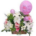 balon ve çiçeklerle tanzim  Muğla çiçek mağazası , çiçekçi adresleri