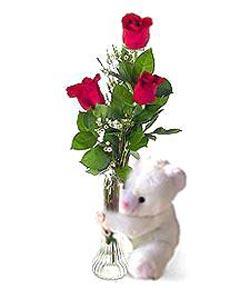 oyuncak ve 3 adet gül  Muğla çiçek servisi , çiçekçi adresleri