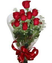 9 adet kaliteli kirmizi gül   Muğla internetten çiçek satışı