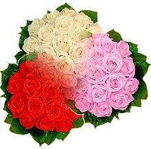3 renkte gül seven sever   Muğla 14 şubat sevgililer günü çiçek