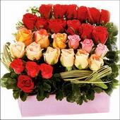 15 adet renkli gül ve cam   Muğla çiçek online çiçek siparişi