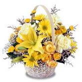 sadece sari çiçek sepeti   Muğla çiçek siparişi vermek