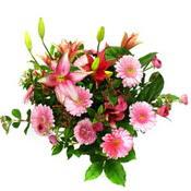 lilyum ve gerbera çiçekleri - çiçek seçimi -  Muğla cicek , cicekci