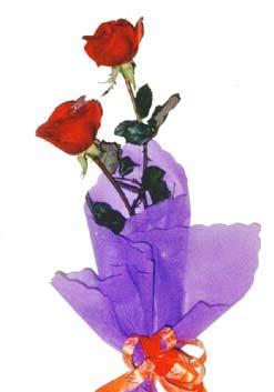 2  adet kirmizi gül buketi   Muğla 14 şubat sevgililer günü çiçek