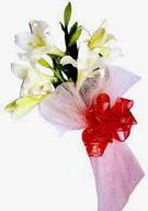 Muğla 14 şubat sevgililer günü çiçek  ince vazoda gerbera ve ayi