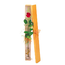 ince  kutuda  1  gül   Muğla online çiçek gönderme sipariş