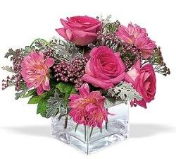 Muğla İnternetten çiçek siparişi  cam içerisinde 5 gül 7 gerbera çiçegi