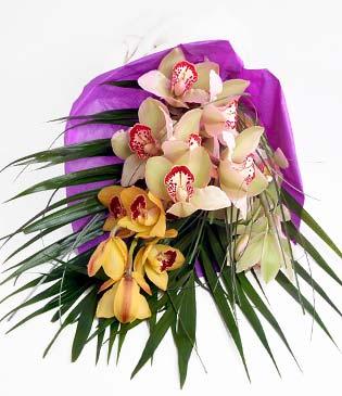 Muğla İnternetten çiçek siparişi  1 adet dal orkide buket halinde sunulmakta