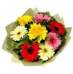 9 adet karisik gerbera demeti  Muğla ucuz çiçek gönder