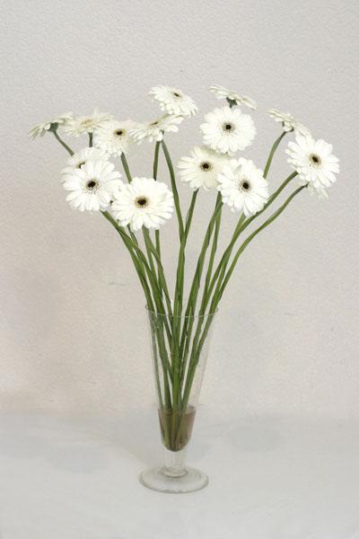 Muğla ucuz çiçek gönder  cam vazo içerisinde 17 adet sade gerbera