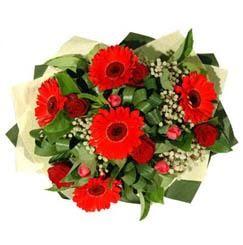 Muğla anneler günü çiçek yolla   5 adet kirmizi gül 5 adet gerbera demeti