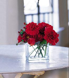 Muğla anneler günü çiçek yolla  kirmizinin sihri cam içinde görsel sade çiçekler