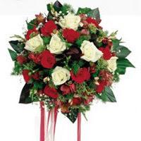 Muğla anneler günü çiçek yolla  6 adet kirmizi 6 adet beyaz ve kir çiçekleri buket