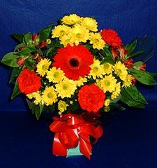 Muğla anneler günü çiçek yolla  sade hos orta boy karisik demet çiçek