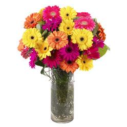 KARISIK GERBERALARDAN CAM VAZO TANZIMI  Muğla çiçekçi mağazası