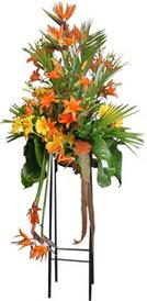 Muğla çiçek servisi , çiçekçi adresleri  perförje tanzimi dügün nikah ve açilislara