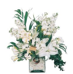 Muğla güvenli kaliteli hızlı çiçek  sadece beyazlardan olusmus mevsim cam yada mika tanzim