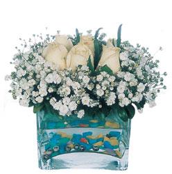 Muğla çiçek online çiçek siparişi  mika yada cam içerisinde 7 adet beyaz gül