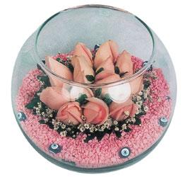 Muğla çiçek mağazası , çiçekçi adresleri  cam fanus içerisinde 10 adet gül