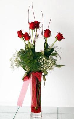 Muğla İnternetten çiçek siparişi  6 adet kirmizi gül ve cam yada mika vazo