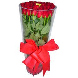 Muğla çiçek satışı  12 adet kirmizi gül cam yada mika vazo tanzim