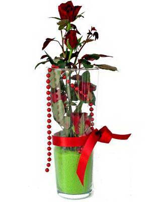 Muğla online çiçekçi , çiçek siparişi  Cam yada mika içerisinde 9 adet kirmizi gül - sevdiklerinize özel