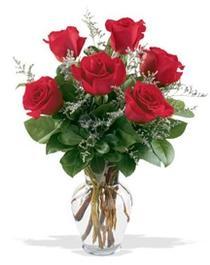 Muğla çiçek siparişi vermek  7 adet kirmizi gül cam yada mika vazoda sevenlere