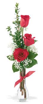 Muğla İnternetten çiçek siparişi  mika yada cam vazoda 3 adet kirmizi gül