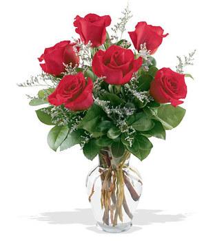 Muğla İnternetten çiçek siparişi  cam yada mika vazoda 6 adet kirmizi gül