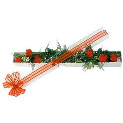 Muğla çiçek servisi , çiçekçi adresleri  6 adet kirmizi gül kutu içerisinde