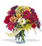 Muğla 14 şubat sevgililer günü çiçek  cam yada mika vazo içerisinde karisik kir çiçekleri