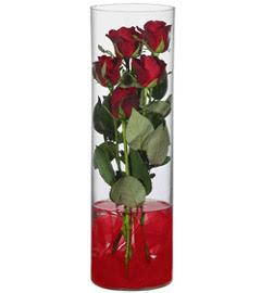 cam içerisinde 7 adet kirmizi gül  Muğla kaliteli taze ve ucuz çiçekler