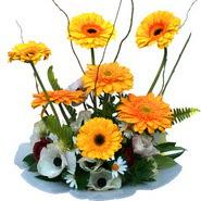 camda gerbera ve mis kokulu kir çiçekleri  Muğla cicekciler , cicek siparisi