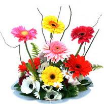 Muğla hediye sevgilime hediye çiçek  camda gerbera ve mis kokulu kir çiçekleri