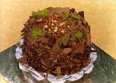 Çikolatali 4 ila 6 kisilik yas pasta  Muğla çiçek siparişi vermek